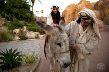 Mary, Joseph and Donkey